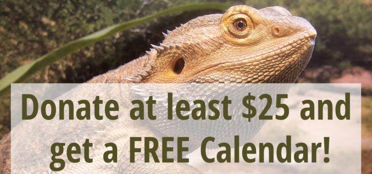 Calendar Contest! (Contest Closed)